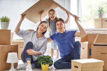 Affordable furniture removals